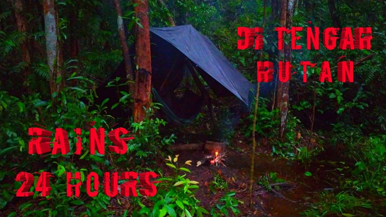 BUSHCRAFT INDONESIA RAIN IN THE FOREST 24 HOURS - CAMPING INDONESIA RAINS 24 HOURS IN THE FOREST