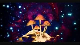 Psylex - Psychedelic Vibrations Vol 3 (Fullon DJ Set)