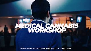 Promo MMJ Workshop in Chicago, IL | November 16th
