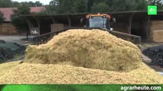 Hofreport aus Niedersachsen: 22 Hektar Mais in ein Silo