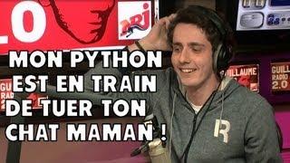 Mon python est en train de tuer ton chat maman ! Ca hurle ! guillaume radio 2.0