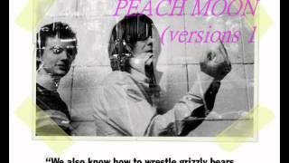 The Unicorns - Peach Moon (versions 1 + 2)