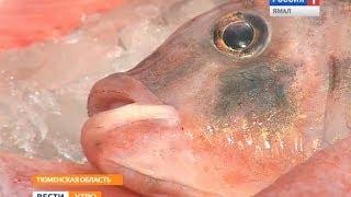 Рыбоводческое хозяйство в Тюменской области посетили аграрии из других муниципалитетов
