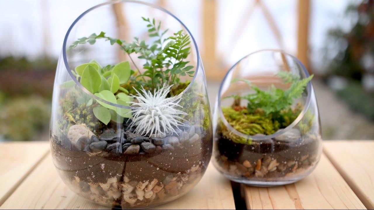 How To Make A Terrarium Garden Answer Youtube