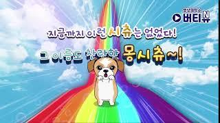 몽시츄 캐릭터 애니메이션 오프닝 제작(animation…