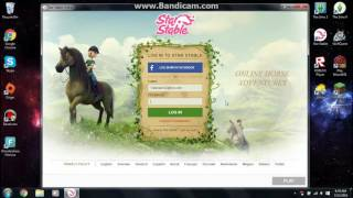 Star Stable Online| How To Name Your Horse In Another Language