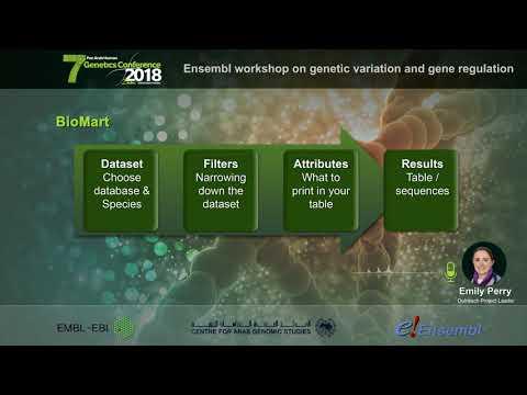 Ensembl Workshop on Gene Regulation at the 7th Pan Arab Human Genetics Conference