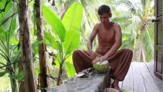 Охота на Кокосы: Как Выбирать и Открывать Кокосы