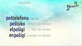 POŜO substantivo em Esperanto