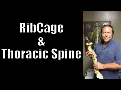 Rib Cage and Thoracic Spine: How Stress Kills, Scoliosis prevention and more!
