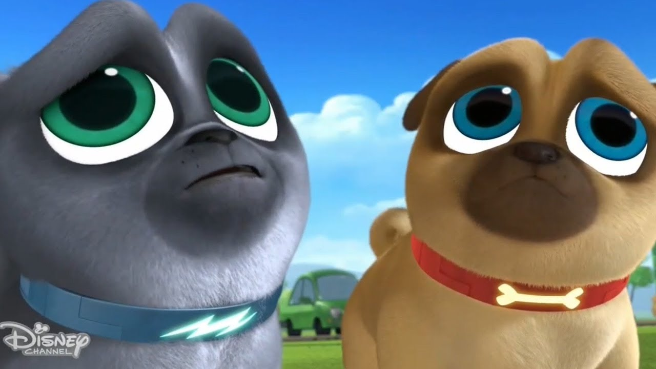 Hissy Goes To The Spa Puppy Dog Pals Bingo And Rolly 2018 Youtube