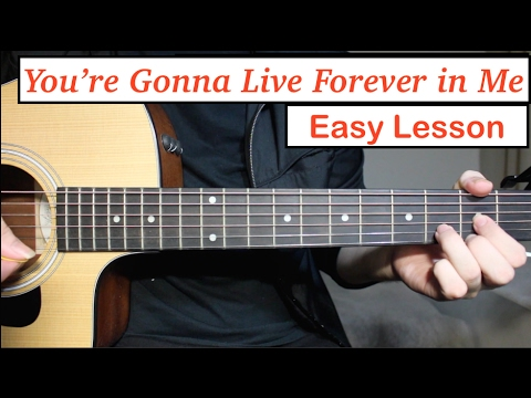 John Mayer - You're Gonna Live Forever In Me | Guitar Lesson (Tutorial) How To Play Chords