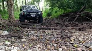 TD42 Patrol/Maverick swb walking through the roots at crystal creek 4x4 track