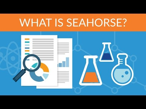 Data Science Hands on with Open source Tools - What is Seahorse