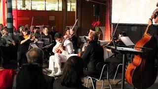 "Christian Reichert plays ""Concierto de Aranjuez"" by Joaquin Rodrigo"