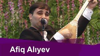 Afiq Alıyev --Mən səni görməyə gəlmişdim kəndə