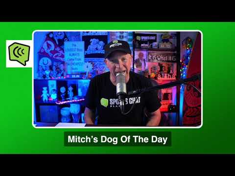 Mitch's Dog of the Day 1/26/21: Free College Basketball Pick CBB Picks, Predictions and Betting Tip