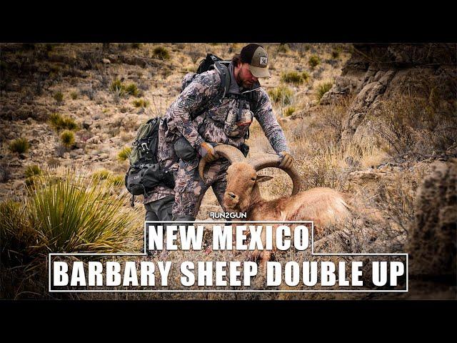 New Mexico Barbary Sheep Double Up-2020