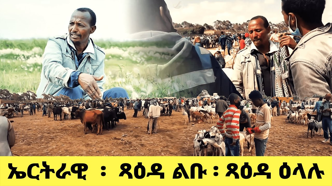 Download EMN - ኤርትራዊ  ፡  ጻዕዳ ልቡ ፡ ጻዕዳ ዕላሉ - Eritrean Media Network