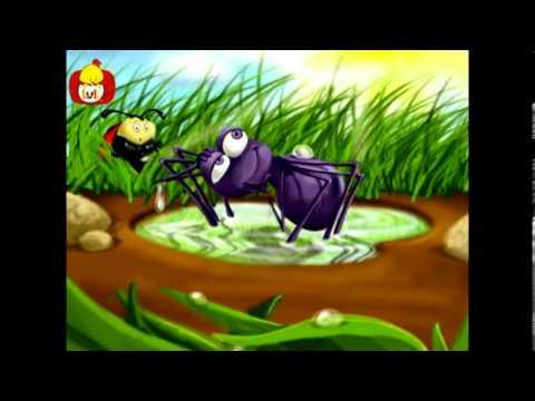Küçük örümcek şarkısı - Popüler çocuk şarkıları Türkçe, Luli TV