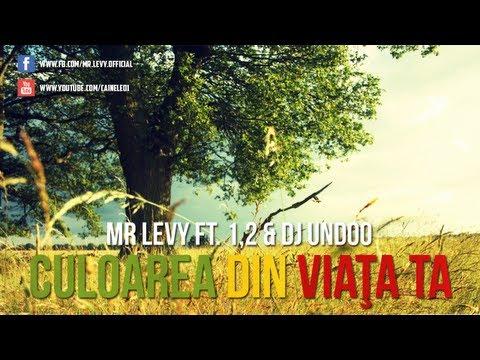Mr.Levy - Culoa din viata ta ( feat. 1,2 & Dj Undoo ...