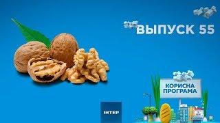как выбрать вкусные орехи | ПОЛЕЗНАЯ ПРОГРАММА. Выпуск 55 — 05.12.2019