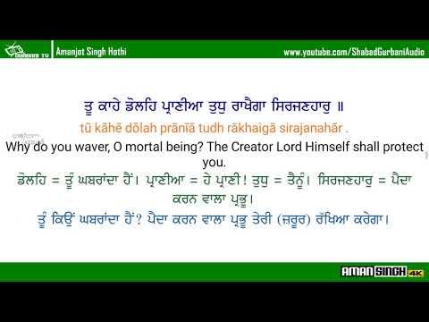 Tu Kahe Dole Praniya/Shabad Gurbani/Malkit Singh/With Eng translation And Eng+Pbi Meaning/4K