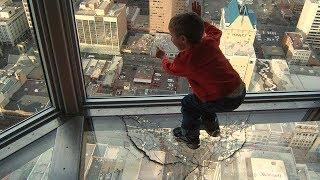 La vitre s'est cassée... (ʘ_ʘ)