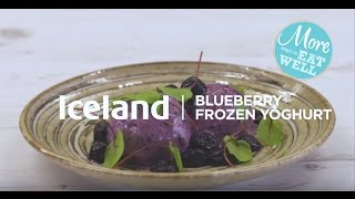 Blueberry Frozen Yoghurt