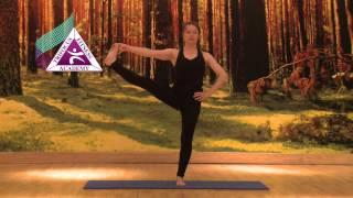 Yoga - Utthita Hasta Padagusthasana (Extended Hand to Big Toe Pose)
