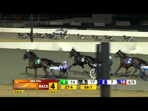Meadowlands November 28, 2014 - Race 4 - Martiniwithmuscle