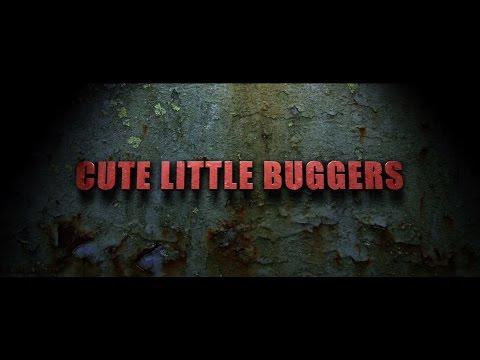 Cute Little Buggers  3 HD