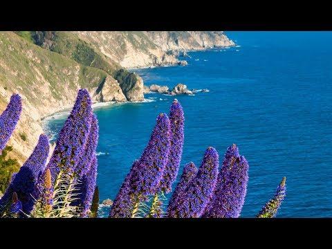 Relaxing Beautiful Instrumetnal Music, Spa, Sleep,