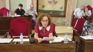 Pleno mayo 2017 - Plan Especial Cabezo de Torres (I)
