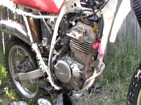 Honda xr250 1996  New project!!!