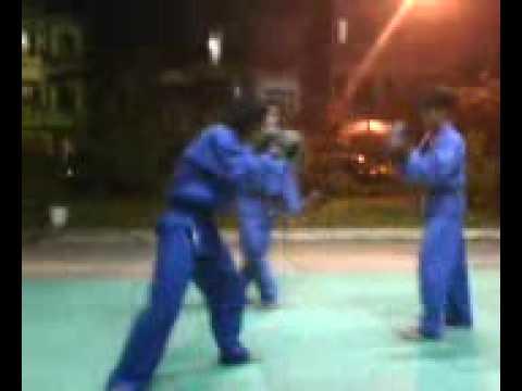vovinam kungfu