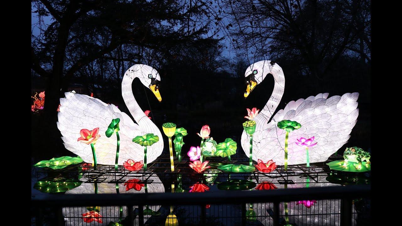 Kölner Zoo China