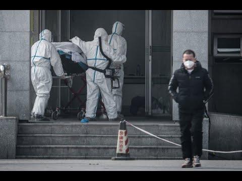 Cet24: Китайский коронавирус. Новости ночью 3 февраля (03.02.2020). Распространение вируса из Китая