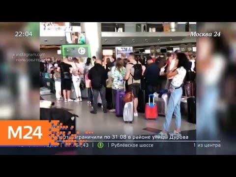 Во Внуково почти два часа не работала система регистрации пассажиров - Москва 24