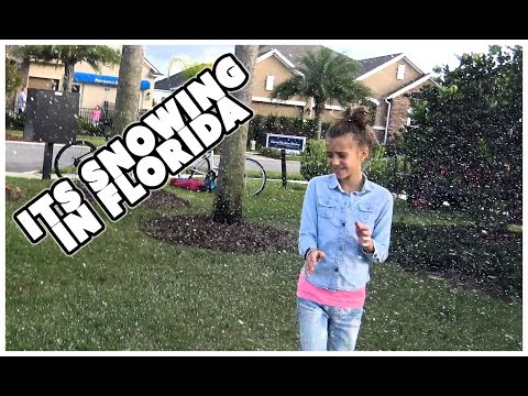 😊IT'S SNOWING IN FLORIDA 😊AND THE PAINTING PARTY IS OVER 😊 FAMILY VLOG 😊 SMELLY BELLY TV