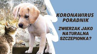 Koronawirus poradnik odc. 15 - Zwierzak jako naturalna szczepionka na COVID-19?