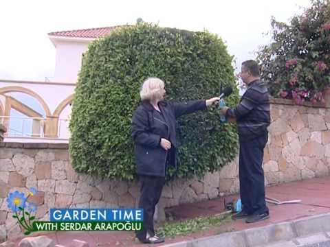 Garden Time ''Hedge Trimmer & Plants''
