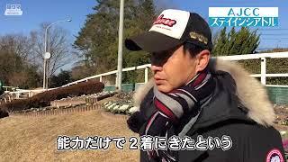 【池江厩舎】ステイインシアトル【AJCC】