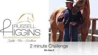 2 minute Challenge (on-line)