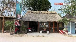 Die Höhlenforscher von Yukatan