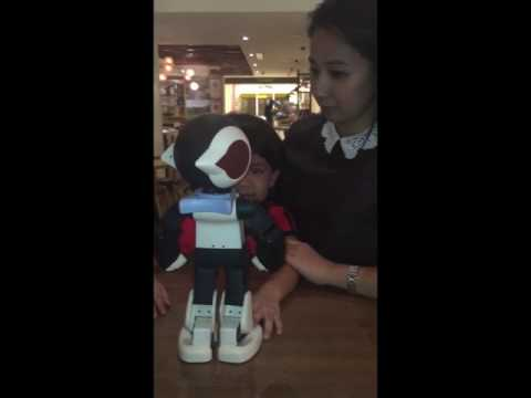 ROBI the trilingual robotic that speaks Manglish