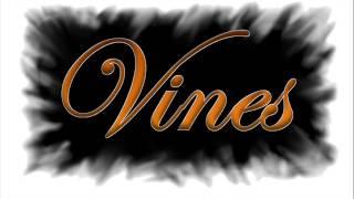 Czerwone Gitary - Senny szept (Zespół Vines cover)