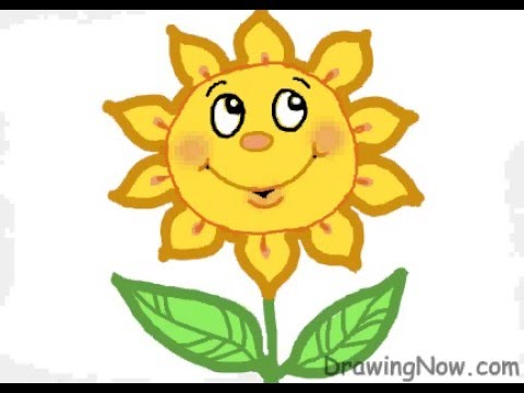 How to Draw a Sunflower - YouTube