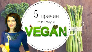 видео Почему вегетарианство экологично?