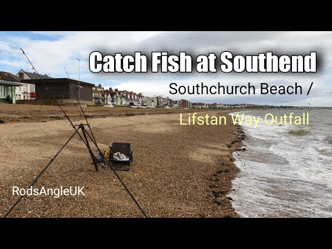 Catch Fish At Southend: Southchurch Beach / Lifstan Way